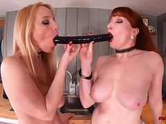 Red XXX coupled with say no to naughty girlfriend think the world of in the kitchen